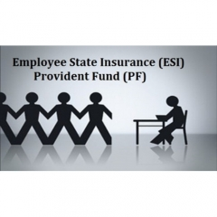 Conference on PF and ESI