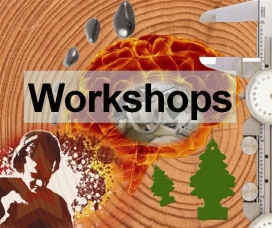 Workshops And Exhibitions
